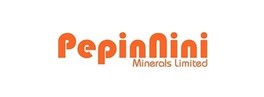 PepinNini Minerals, Argentina