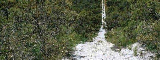 Ventnor Resources' Muchea Silica Sands Project