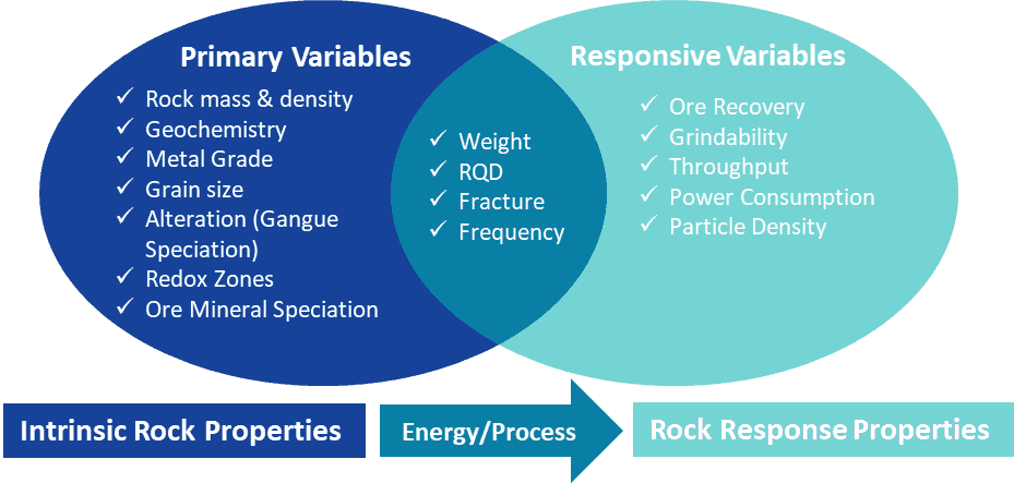 Diagram summarizing primary and responsive geometallurgical variables