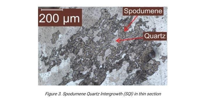 Figure 3.Spodumene Quartz Intergrowth (SQI) in thin section